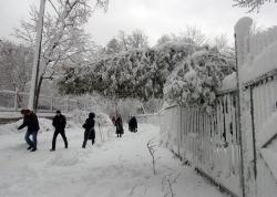 Київ, сильний снігопад.
