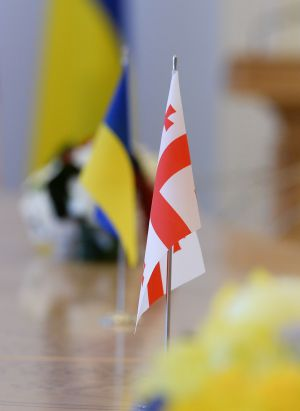Встреча Председателя Верховной Рады Украины Дмитрия Разумкова с Президентом Грузии Саломе Зурабишвили