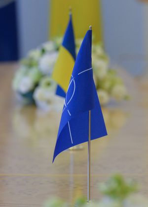 Встреча Председателя Верховной Рады Украины Дмитрия Разумкова с заместителем Генерального секретаря НАТО Мирче Джоанэ